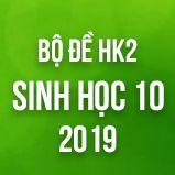 Bộ đề thi HK2 môn Sinh học lớp 10 năm 2019
