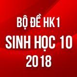 Bộ đề thi HK1 môn Sinh học lớp 10 năm 2018