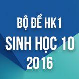 Bộ đề thi HK1 môn Sinh học lớp 10 năm 2016