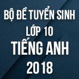 Bộ đề thi tuyển sinh vào lớp 10 THPT môn Tiếng Anh năm 2018