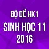 Bộ đề thi HK1 môn Sinh học lớp 11 năm 2016