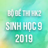 Bộ đề thi HK2 môn Sinh học lớp 9 năm 2019