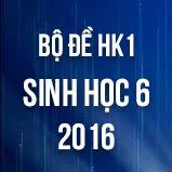 Bộ đề thi HK1 môn Sinh học lớp 6 năm 2016