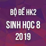 Bộ đề thi HK2 môn Sinh học lớp 8 năm 2019