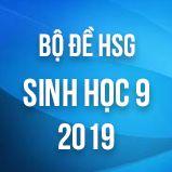 Bộ đề thi HSG môn Sinh học lớp 9 năm 2018 - 2019
