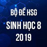 Bộ đề thi HSG môn Sinh học lớp 8 năm 2018-2019