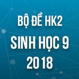 Bộ đề thi HK2 môn Sinh học lớp 9 năm 2017-2018