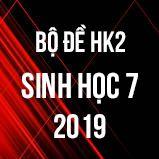 Bộ đề thi HK2 môn Sinh học lớp 7 năm 2019