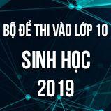 Bộ đề thi tuyển sinh vào lớp 10 THPT môn Sinh học năm 2019