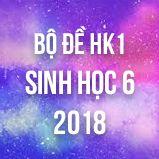 Bộ đề thi HK1 môn Sinh lớp 6 năm 2018
