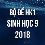 Bộ đề thi HK1 môn Sinh học lớp 9 năm 2018