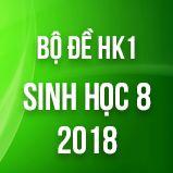 Bộ đề thi HK1 môn Sinh học lớp 8 năm 2018