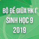 Bộ đề thi giữa HK1 môn Sinh học lớp 9 năm 2019