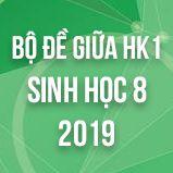 Bộ đề thi giữa HK1 môn Sinh học lớp 8 năm 2019