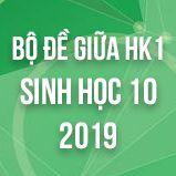 Bộ đề thi giữa HK1 môn Sinh học lớp 10 năm 2019