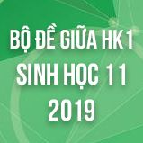 Bộ đề thi giữa HK1 môn Sinh học lớp 11 năm 2019