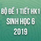 Bộ đề kiểm tra 1 tiết HK1 môn Sinh học lớp 6 năm 2019