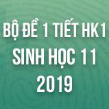 Bộ đề kiểm tra 1 tiết HK1 môn Sinh học lớp 11 năm 2019
