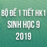Bộ đề kiểm tra 1 tiết HK1 môn Sinh học lớp 9 năm 2019