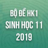 Bộ đề thi HK1 môn Sinh học lớp 11 năm 2019