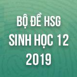 Bộ đề thi HSG môn Sinh học lớp 12 năm 2019