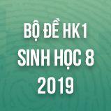 Bộ đề thi HK1 môn Sinh học lớp 8 năm 2019