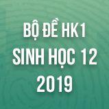 Bộ đề thi HK1 môn Sinh học lớp 12 năm 2019