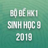 Bộ đề thi HK1 môn Sinh học lớp 9 năm 2019