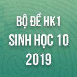 Bộ đề thi HK1 môn Sinh học lớp 10 năm 2019