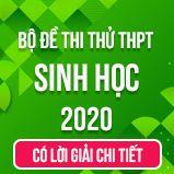 Bộ đề thi thử tốt nghiệp THPT Quốc gia năm 2020 môn Sinh học có lời giải chi tiết