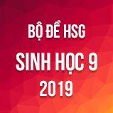 Bộ đề thi HSG môn Sinh học lớp 9 năm 2019 - 2020