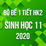 Bộ đề kiểm tra 1 tiết HK2 môn Sinh học lớp 11 năm 2020