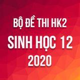 Bộ đề thi HK2 môn Sinh học lớp 12 năm 2020