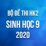 Bộ đề thi HK2 môn Sinh học lớp 9 năm 2020