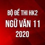 Bộ đề thi HK2 môn Ngữ Văn lớp 11 năm 2020