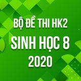 Bộ đề thi HK2 môn Sinh học lớp 8 năm 2020