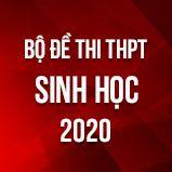 Bộ đề thi tốt nghiệp THPT môn Sinh học năm 2020