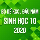 Bộ đề kiểm tra KSCL đầu năm môn Sinh lớp 10 năm 2020