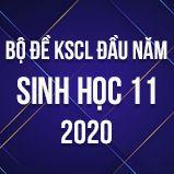 Bộ đề kiểm tra KSCL đầu năm môn Sinh lớp 11 năm 2020