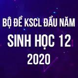 Bộ đề kiểm tra KSCL đầu năm môn Sinh lớp 12 năm 2020
