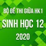 Bộ đề thi giữa HK1 môn Sinh học lớp 12 năm 2020