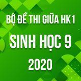 Bộ đề thi giữa HK1 môn Sinh lớp 9 năm 2020