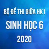 Bộ đề thi giữa HK1 môn Sinh học lớp 6 năm 2020
