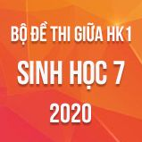 Bộ đề thi giữa HK1 môn Sinh học lớp 7 năm 2020