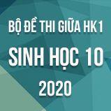 Bộ đề thi giữa HK1 môn Sinh học lớp 10 năm 2020