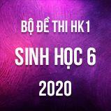 Bộ đề thi HK1 môn Sinh học lớp 6 năm 2020
