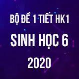 Bộ đề kiểm tra 1 tiết HK1 môn Sinh học lớp 6 năm 2020