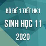 Bộ đề kiểm tra 1 tiết HK1 môn Sinh học lớp 11 năm 2020