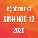 Bộ đề thi HK1 môn Sinh học lớp 12 năm 2020