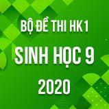 Bộ đề thi HK1 môn Sinh học lớp 9 năm 2020